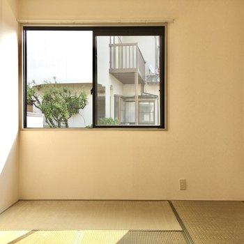 こちらは6畳の和室。ここの日当たりとってもいい!