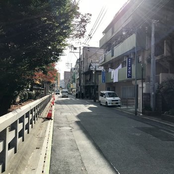 マンションの前の道、雰囲気いいですね