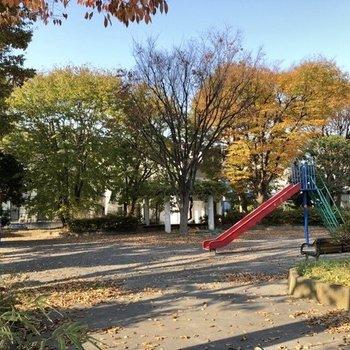 近くには自然を感じられる公園。