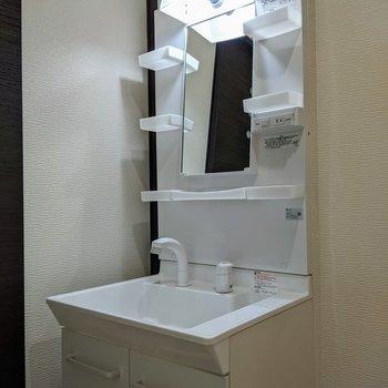 独立式の洗面台。レバータイプなので温度調整がラクラク