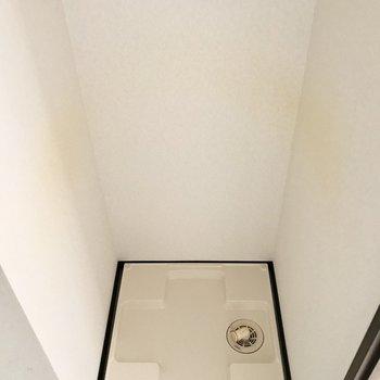 洗濯パンは独立洗面台横に。※写真は1階の同間取り別部屋のものです