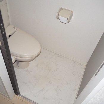 トイレはちょうど良い大きさかな※写真は1階の同間取り別部屋のものです