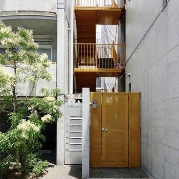クールなコンクリートに黄色く塗装された鉄と鮮やかな緑が映える素敵な共用空間。