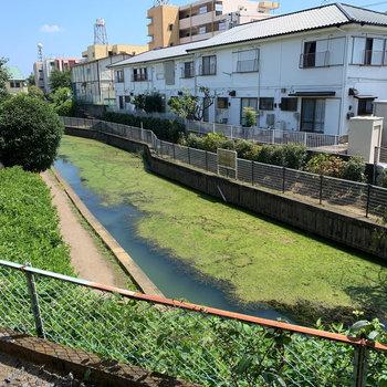 川沿いのアパート