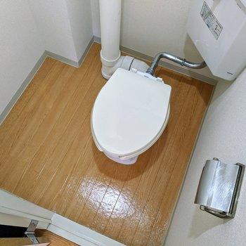 トイレは広めのスペースです。掃除道具や予備のトイレットペーパーを置く場所もありますね。