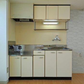 キッチンには収納が沢山あります。