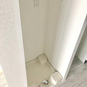 洗濯機置き場の上には可動式の棚が2段ついています。