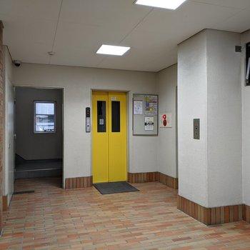 エントランスは広々。黄色でポップな色合いのエレベーターがキュート
