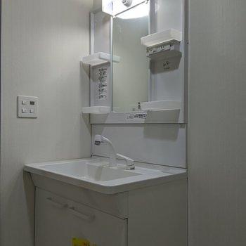 独立式の洗面台。レバー式なので温度調整はラクラク