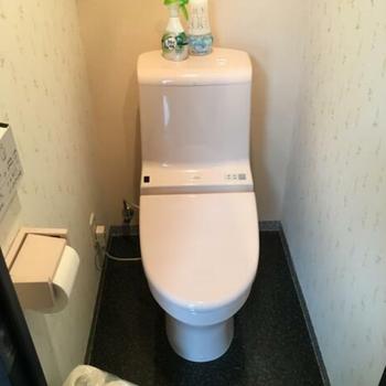 薄ピンクのトイレ、レトロですね〜