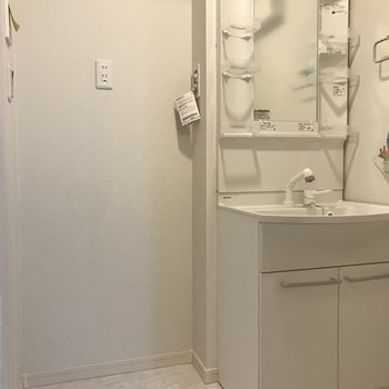 洗面台と洗濯機置き場は隣り合っています