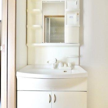洗面台は棚付き。ボウルが大きめで朝の洗髪が楽そう。