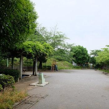 建物の目の前には公園があります