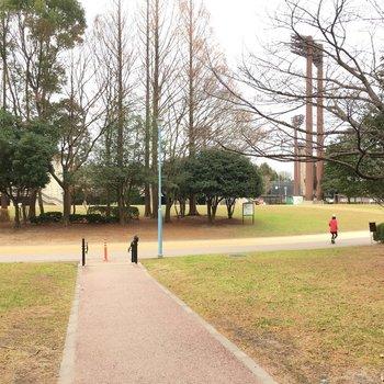 徒歩約5分の所に大きな公園が〜!市役所は公園の横にあります。