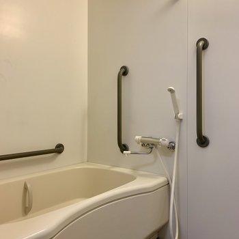 ゆったり浸かれる広さの浴槽。