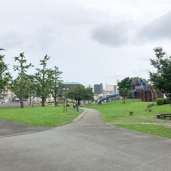 川を渡ったところにある蒔田公園。開放的な景色です。