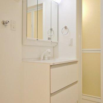 サニタリーも設備充実。3面鏡の洗面台です! (※写真は1階の同間取り別部屋のものです)