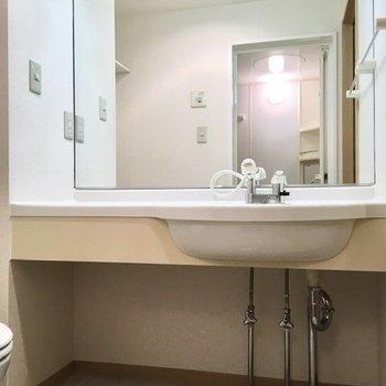 続いてサニタリーへ。大きな鏡の洗面台、シャワーヘッド付きです。