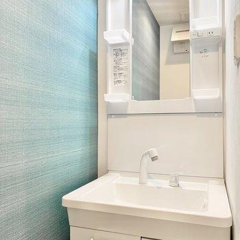 洗面台とトイレは同じ空間です。