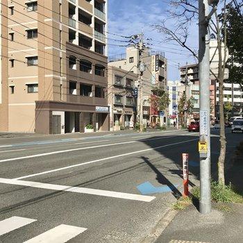 目の前の大通りは車が多く走りますよ