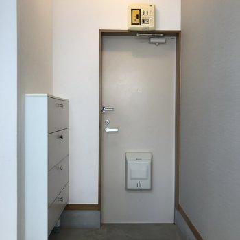 玄関はゆったりとしたスペースがあります。