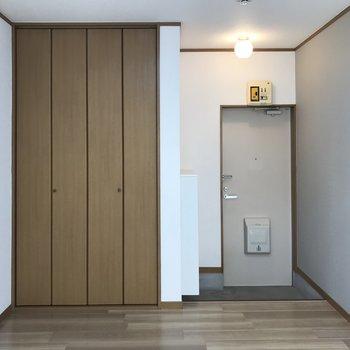 居室の玄関側にはクローゼットがあります。