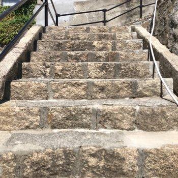 階段を降りてからお部屋まで。