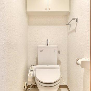 温水洗浄付きの個室トイレ。