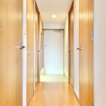 洋室やトイレ、クローゼットにつながる通路です。
