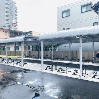 屋根付きの自転車置き場もありますよ。