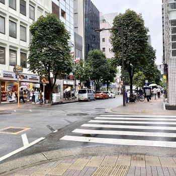 お部屋近くの通り。都会的な町並みが広がります。