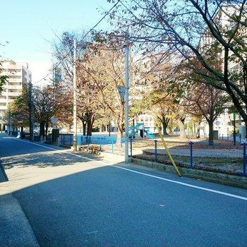 公園は道路を挟んだ場所にあります。のんびりしに行きたいな~!