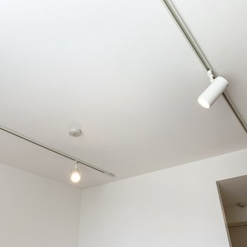 天井にはライティングレールが2本とスポットライトが。