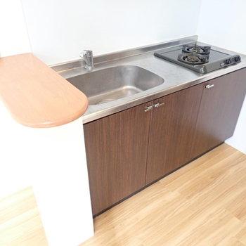カウンターつきのキッチンです!お料理やお皿洗いもしやすそう!(※写真は2階の同間取り別部屋のものです)