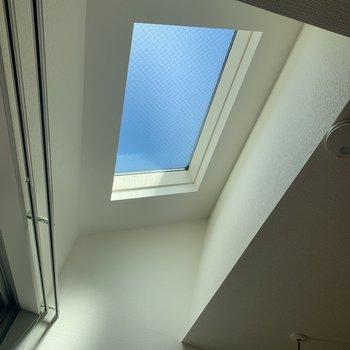 天窓から青空がのぞいて見える。すがすがしい気分になりますね。