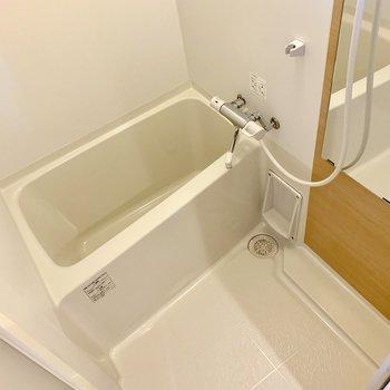 シンプルなバスルーム。鏡付き◎(※写真は2階の同間取り別部屋のものです)