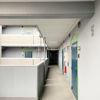 グリーンのドアがかわいい共用廊下。