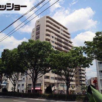 エスポア富士見台 1402号
