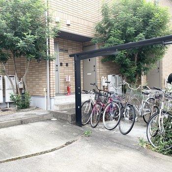 自転車置場もしっかり屋根付で敷地内には緑も◎