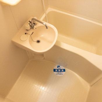 洗い場も浴槽も十分なサイズ感。
