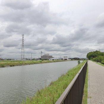 近くを流れる戸田川は遊歩道が整備されていて、散歩も捗りそう。自然環境も豊かな立地です。