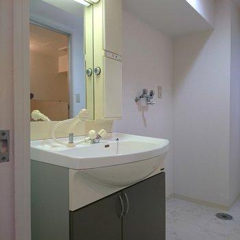 洗面台は、ちょい渋。(※写真は10階同間取り別部屋のものです)
