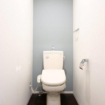 トイレのなんとお上品だこと。雰囲気が良い上、ウォシュレット付きだなんて…!