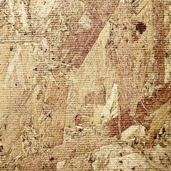 壁はOSB合板という素材。ワイルドな雰囲気がたまらんのです。