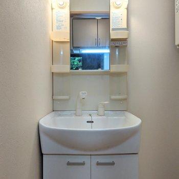 独立式の洗面台。棚が多く沢山収納できます。