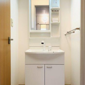 入って右側には洗面所。両脇に収納を入れられそう!
