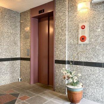 エレベーターホールはお花のある空間です。