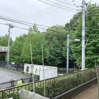 あちらの木々の向こうは小学校。