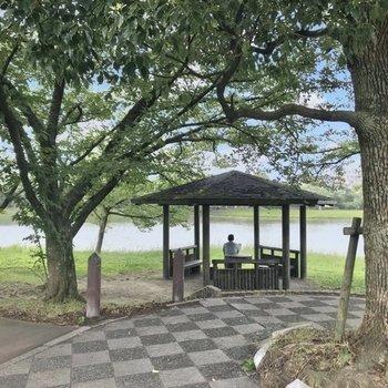 すぐ近くの諸岡池。木陰でボーッとするのもいいですね。