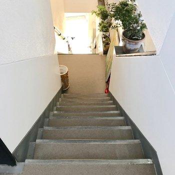 お部屋まではこの階段を登って。2階には美容室が入っています。